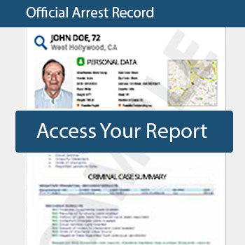 how to see criminal records for free